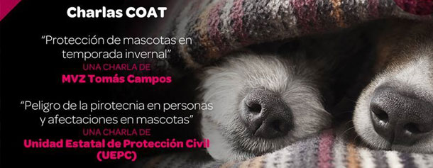 charlas-coat