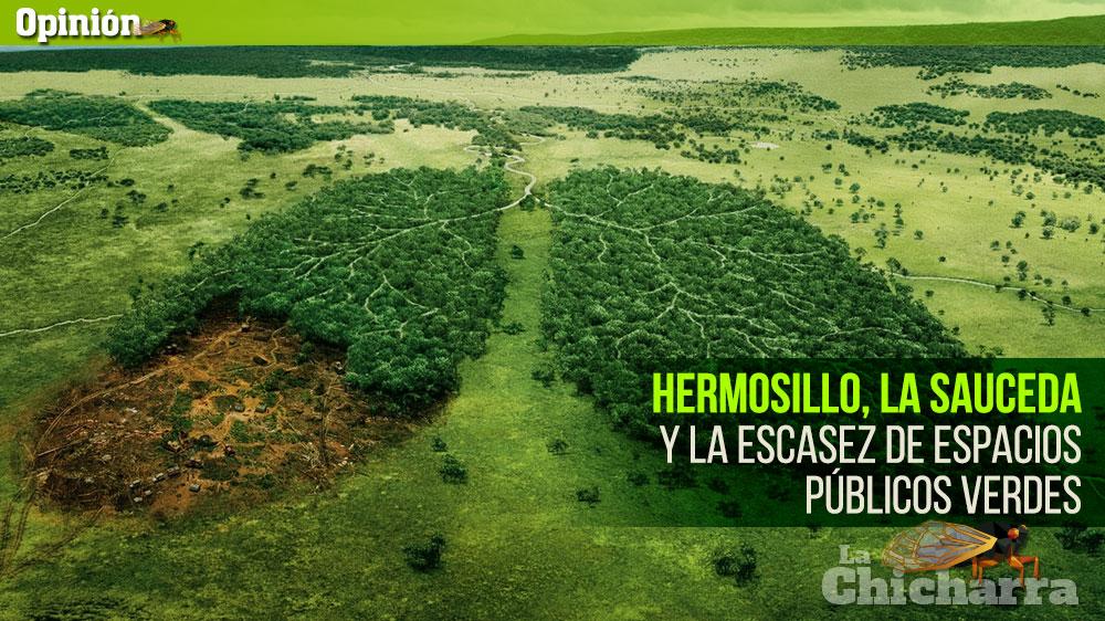 Hermosillo, La Sauceda y la escasez de espacios públicos verdes