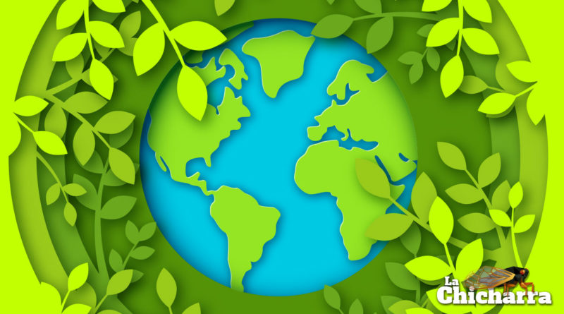 Trendsétera se convierte en la primera agencia en neutralizar al 100% su huella de carbono