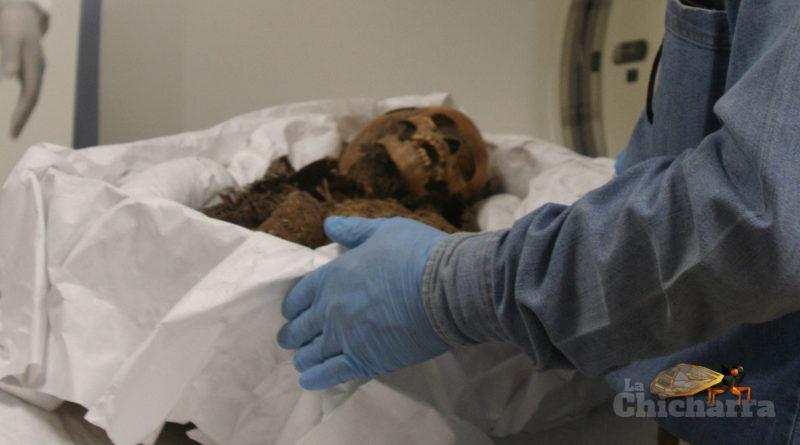Una experiencia virtual durante la tomografía de algunas momias de Sonora